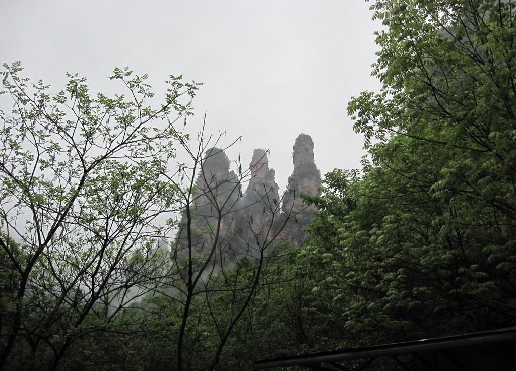 Hainan Wuzhishan Mountain Hiking Tour, Day Hiking Tour in Wuzhishan Tropical Rainforest